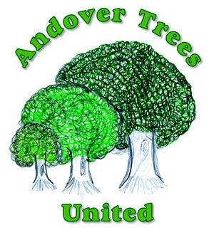 Andover Trees United Logo